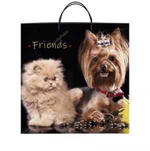 "Пакет на пластиковой ручке ""Friends"" (36х37) 10 шт"