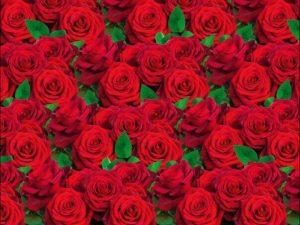 """Бумага Подарочная 33 """"Красные розы"""" (70х100)"""