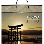 Пакет на пластиковой ручке «Tokyo» (40*40) 10 шт