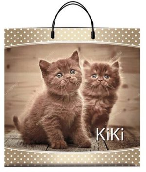 "Пакет на пластиковой ручке ""Kiki» (40*40) 10 шт."