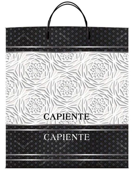 Пакет на пластиковой ручке «Capiente» (40*45) 10 шт.