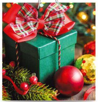 Подарочный пакет картонный «Квадрат» NGKV-25 (23х24х10) подарок