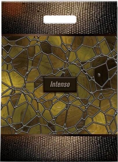 Пакет с прорезной ручкой «Intenso» ламинированный (30*39) 25 шт