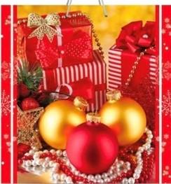 Подарочный пакет картонный «Квадрат» NGKV-30 (23х24х10)